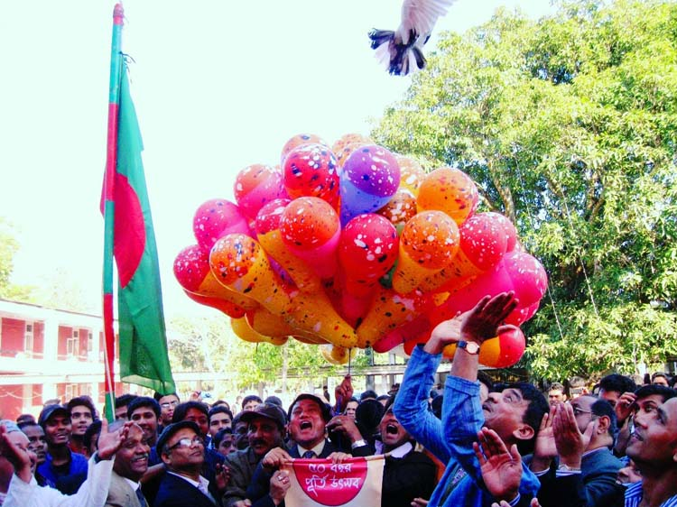 Flying dove and  baloon