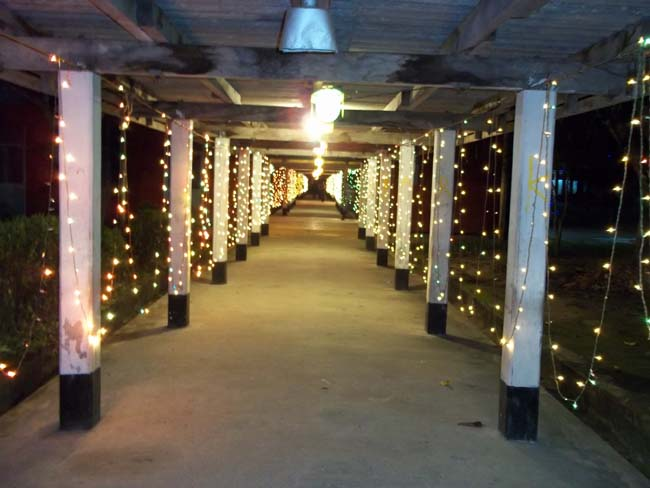 Lighting of walk way in Rag-2011